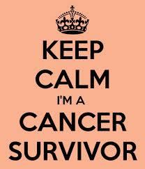 Survivor 4