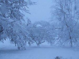 blizzard7
