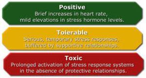 stress 8