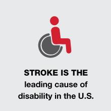stroke4
