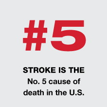 stroke5